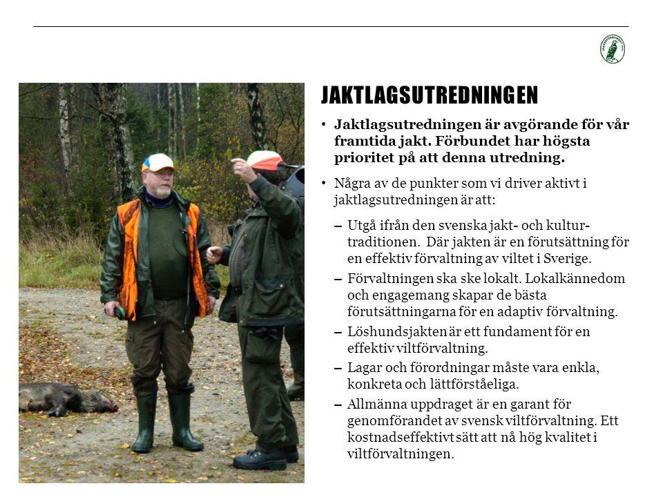 JAKTLAGSUTREDNINGEN • Jaktlagsutredningen är avgörande för vår framtida jakt. Förbundet har högsta prioritet på att denna utredning. • Några av de pun