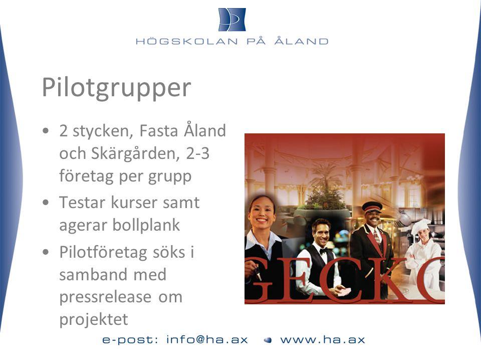Pilotgrupper •2 stycken, Fasta Åland och Skärgården, 2-3 företag per grupp •Testar kurser samt agerar bollplank •Pilotföretag söks i samband med press