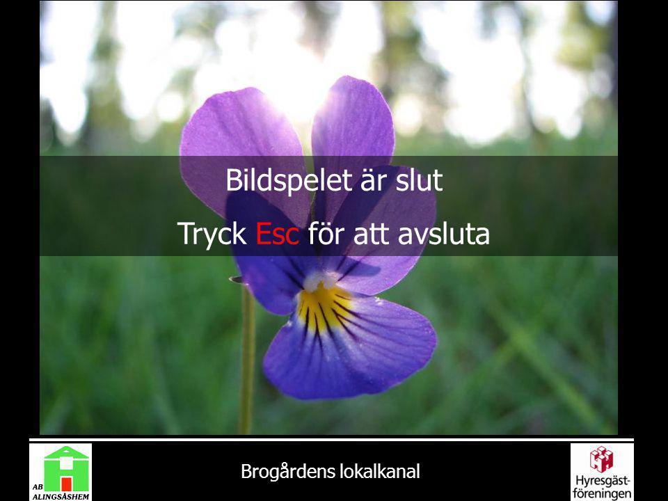 Brogårdens lokalkanal Bildspelet är slut Tryck Esc för att avsluta
