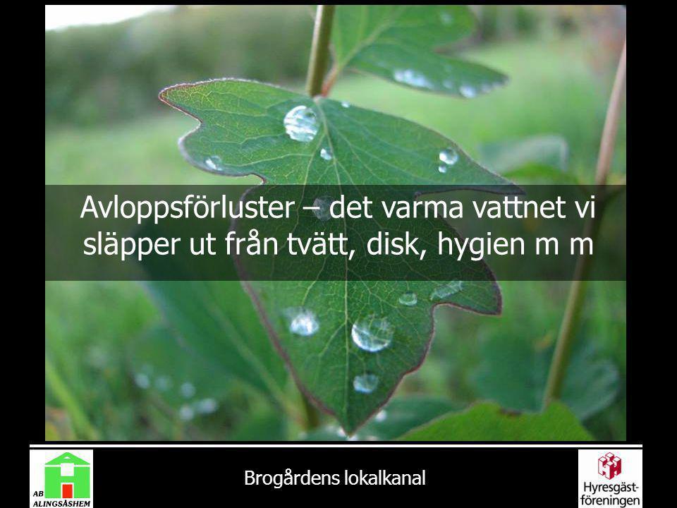 Brogårdens lokalkanal Avloppsförluster – det varma vattnet vi släpper ut från tvätt, disk, hygien m m