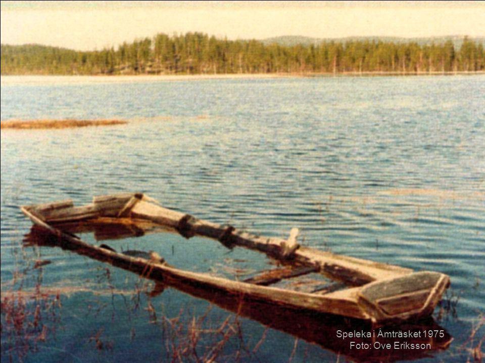 Speleka i Åmträsket 1975 Foto: Ove Eriksson