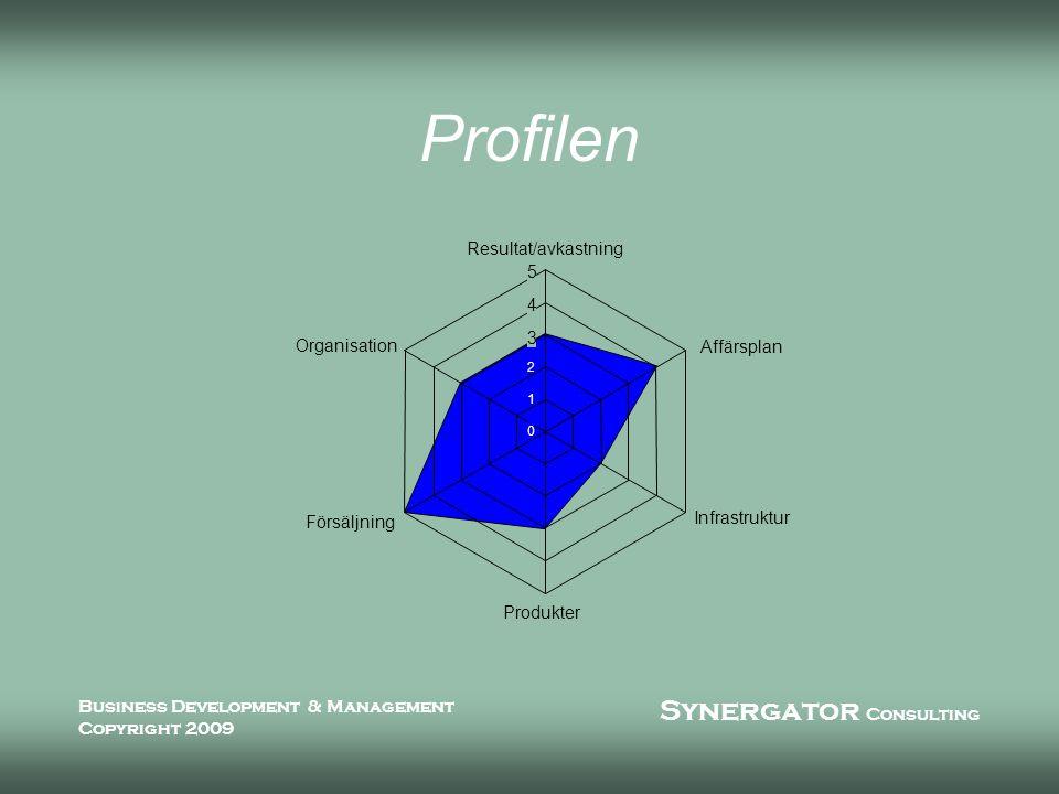Synergator Consulting Business Development & Management Copyright 2009 Profilen 0 1 2 3 4 5 Resultat/avkastning Affärsplan Infrastruktur Produkter Försäljning Organisation