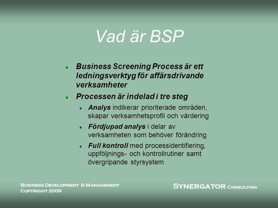 Synergator Consulting Business Development & Management Copyright 2009 Varför BSP.