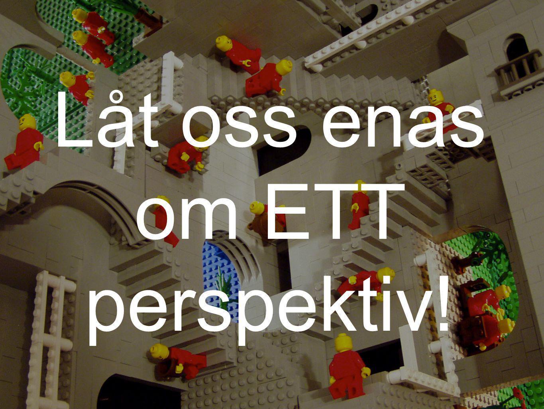 Låt oss enas om ETT perspektiv!