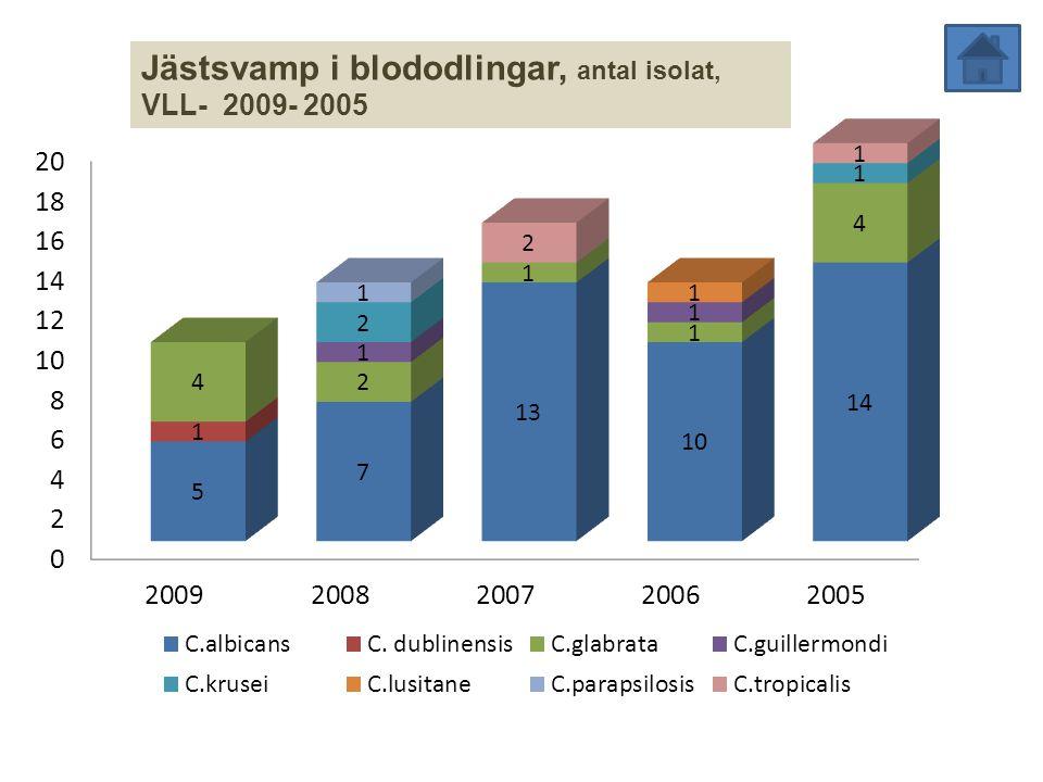 Jästsvamp i blododlingar, antal isolat, VLL- 2009- 2005