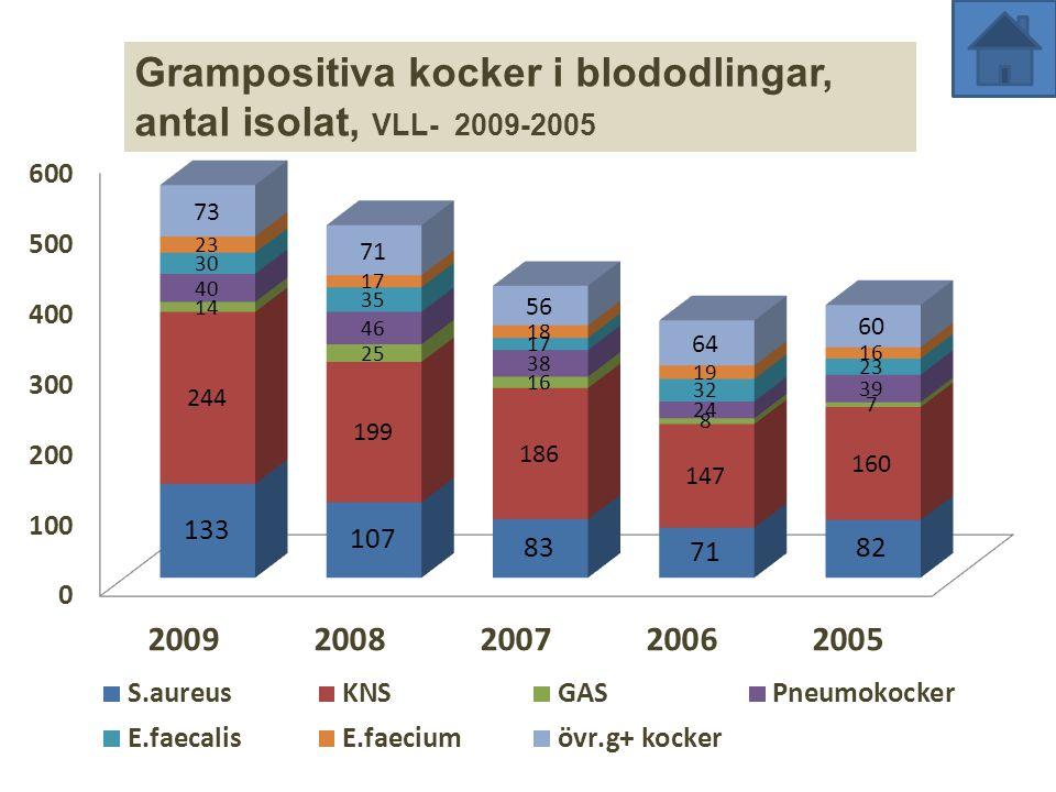 Grampositiva kocker i blododlingar, antal isolat, VLL- 2009-2005