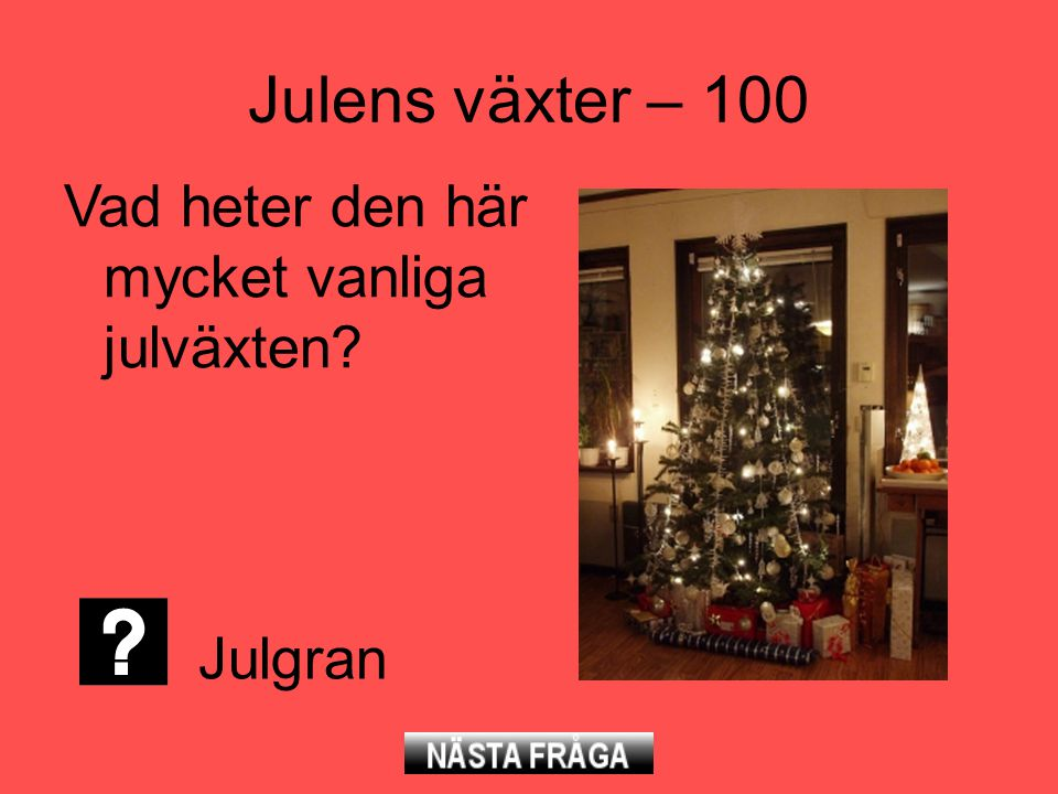 Julens växter – 100 Vad heter den här mycket vanliga julväxten? Julgran