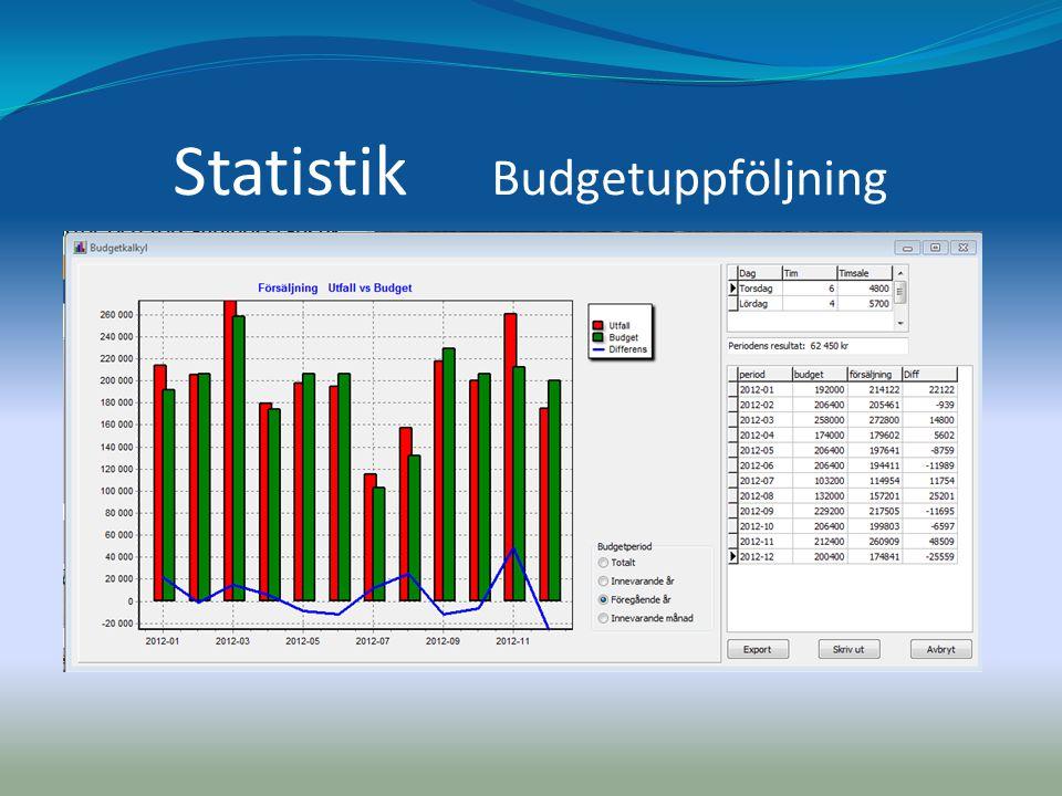 Statistik Budgetuppföljning