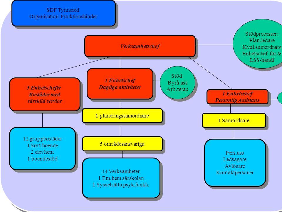 1 Enhetschef Daglig verksamhet 2 Enhetschefer Stöd: Byrå.ass Arb.terap 5 områdesansvariga Stödprocesser: Plan.ledare Kval.samord Lss-handl 13Verksamhe