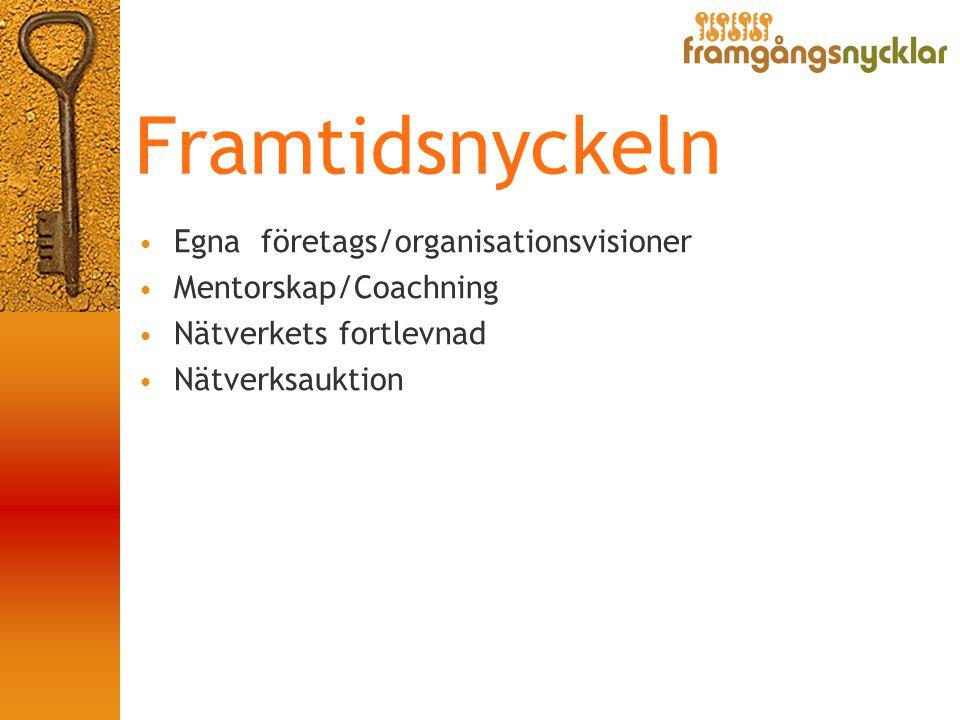 Framtidsnyckeln • Egna företags/organisationsvisioner • Mentorskap/Coachning • Nätverkets fortlevnad • Nätverksauktion