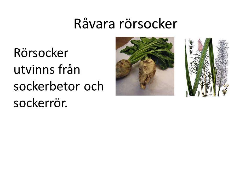 Råvara rörsocker Rörsocker utvinns från sockerbetor och sockerrör.