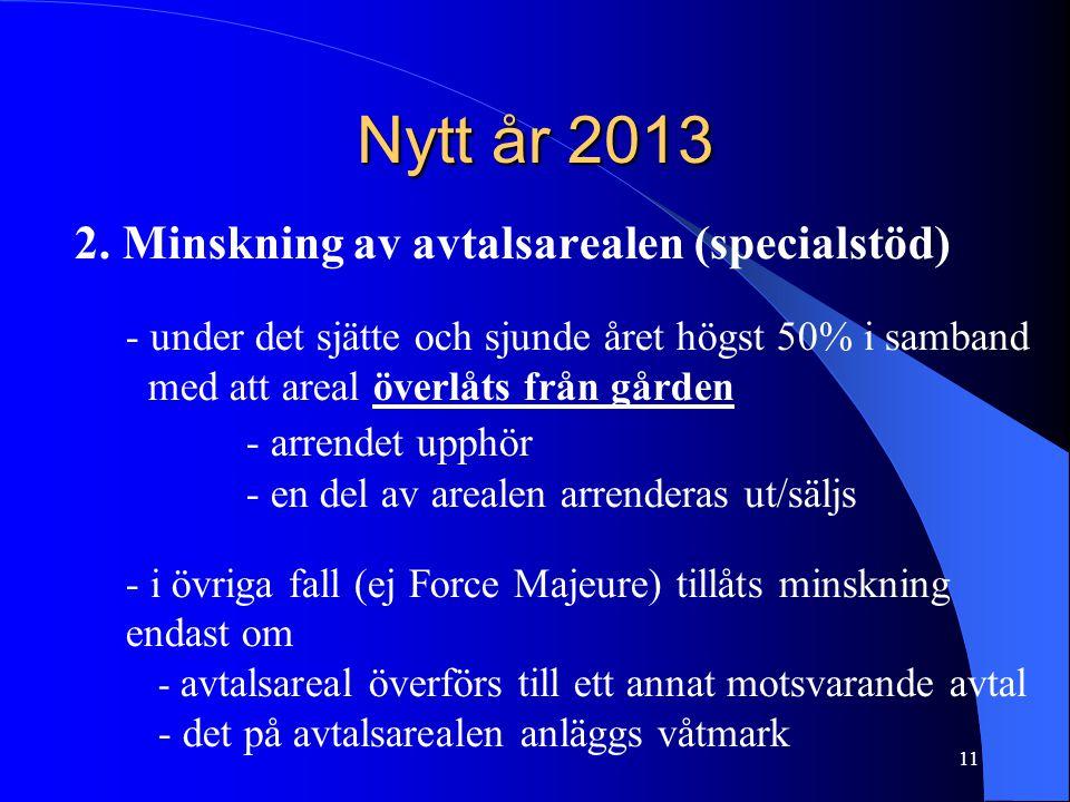 Nytt år 2013 2.