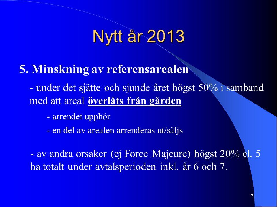 Nytt år 2013 5.