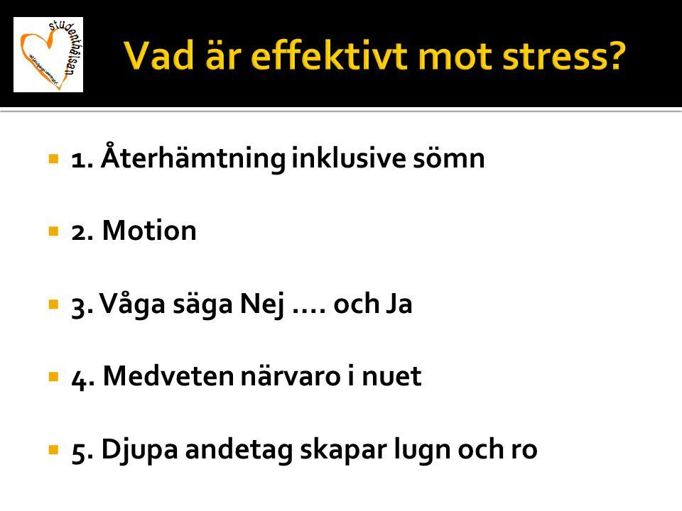  1. Återhämtning inklusive sömn  2. Motion  3. Våga säga Nej …. och Ja  4. Medveten närvaro i nuet  5. Djupa andetag skapar lugn och ro