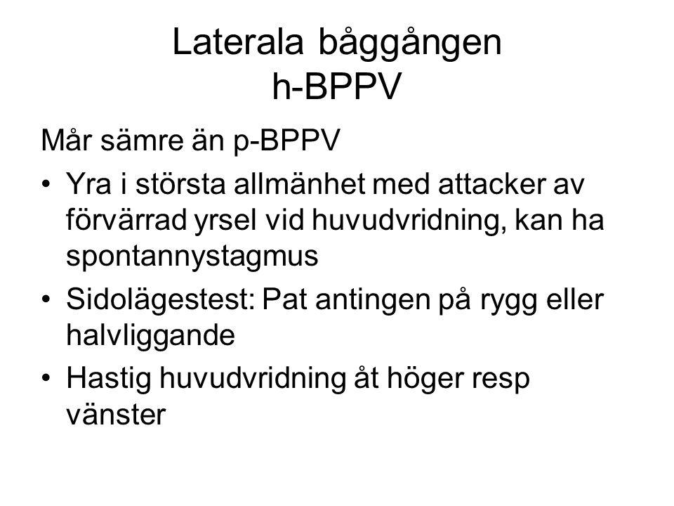 Laterala båggången h-BPPV Mår sämre än p-BPPV •Yra i största allmänhet med attacker av förvärrad yrsel vid huvudvridning, kan ha spontannystagmus •Sidolägestest: Pat antingen på rygg eller halvliggande •Hastig huvudvridning åt höger resp vänster