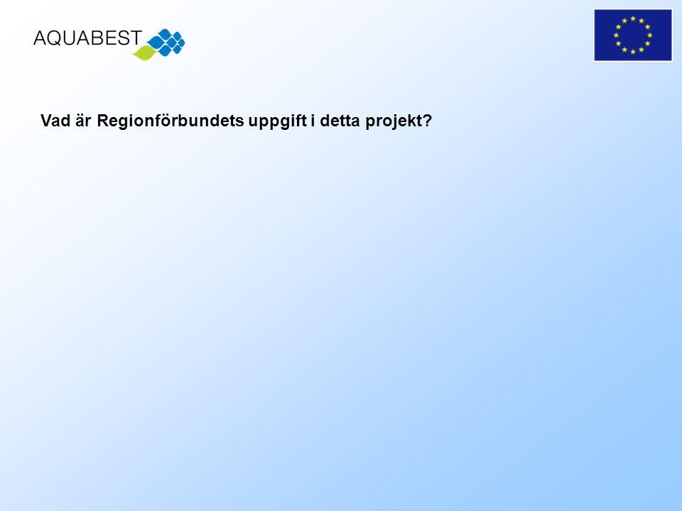 Vad är Regionförbundets uppgift i detta projekt