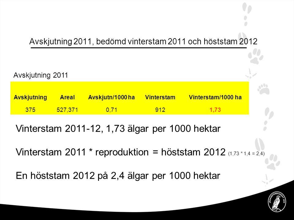 Avskjutning 2011, bedömd vinterstam 2011 och höststam 2012 AvskjutningArealAvskjutn/1000 haVinterstamVinterstam/1000 ha 375527,3710,719121,73 Avskjutning 2011 Vinterstam 2011-12, 1,73 älgar per 1000 hektar Vinterstam 2011 * reproduktion = höststam 2012 (1,73 * 1,4 = 2,4) En höststam 2012 på 2,4 älgar per 1000 hektar