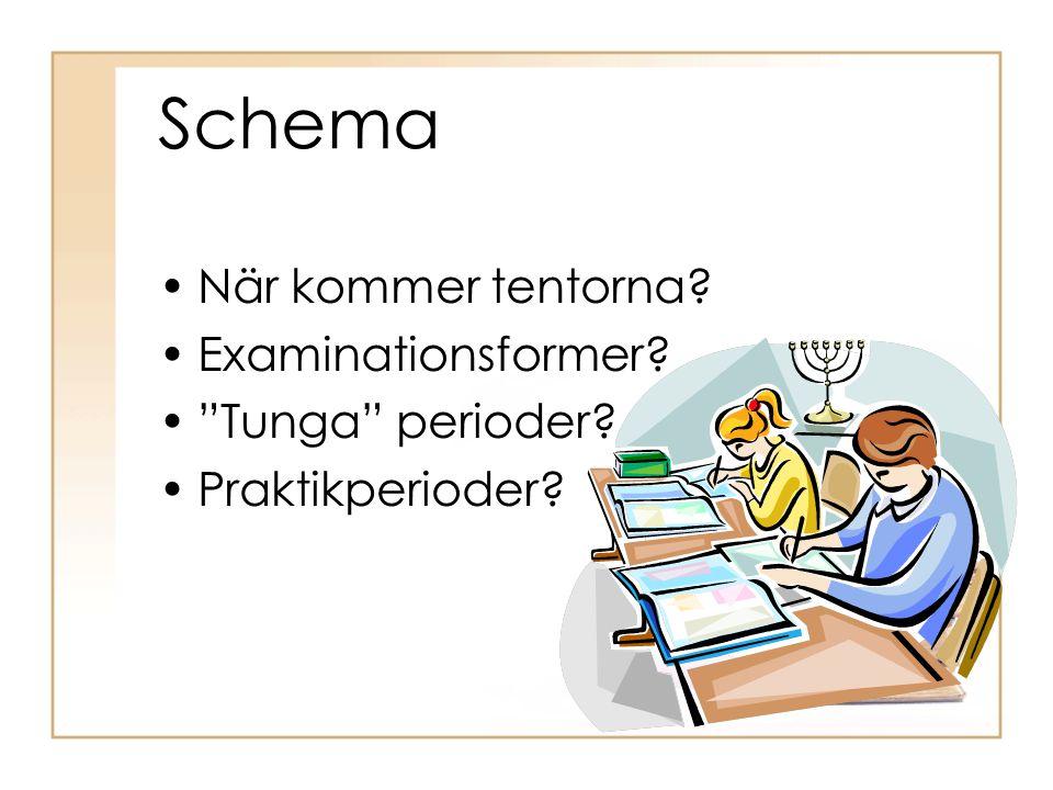 "Schema •När kommer tentorna? •Examinationsformer? •""Tunga"" perioder? •Praktikperioder?"