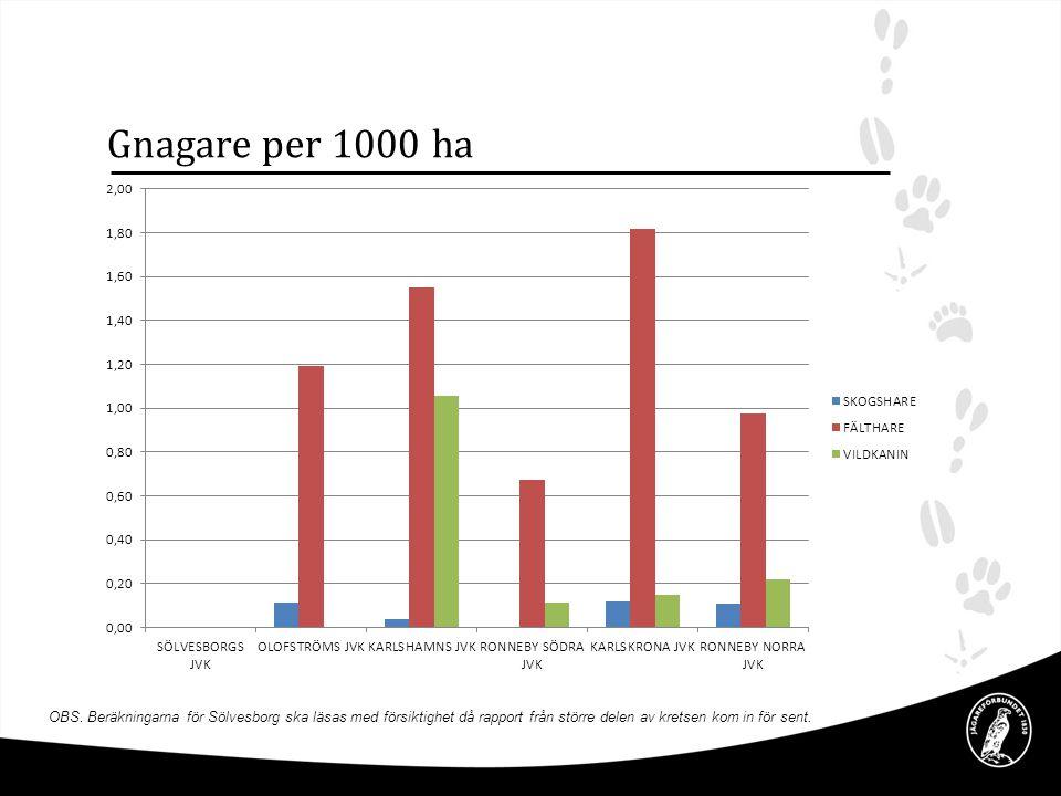 Gnagare per 1000 ha OBS. Beräkningarna för Sölvesborg ska läsas med försiktighet då rapport från större delen av kretsen kom in för sent.