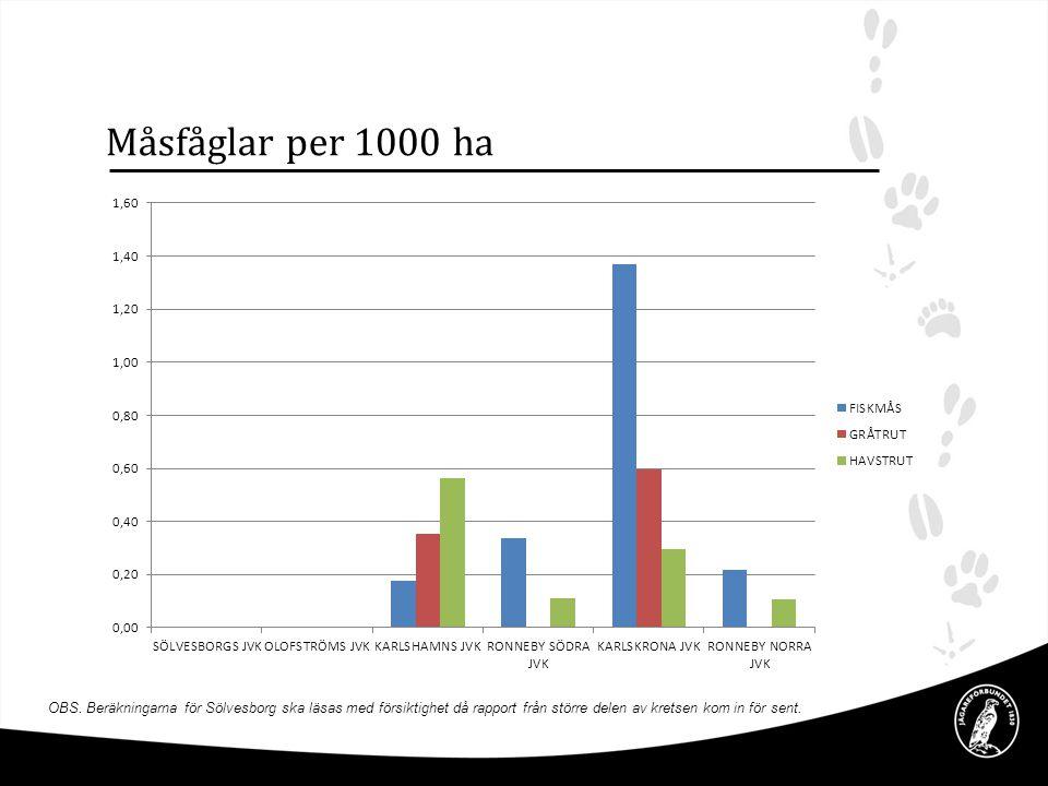 Måsfåglar per 1000 ha OBS. Beräkningarna för Sölvesborg ska läsas med försiktighet då rapport från större delen av kretsen kom in för sent.
