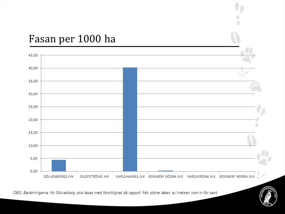 Fasan per 1000 ha OBS. Beräkningarna för Sölvesborg ska läsas med försiktighet då rapport från större delen av kretsen kom in för sent.
