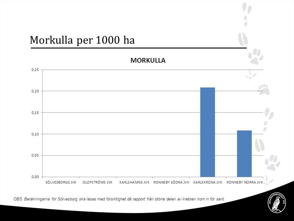 Morkulla per 1000 ha OBS. Beräkningarna för Sölvesborg ska läsas med försiktighet då rapport från större delen av kretsen kom in för sent.