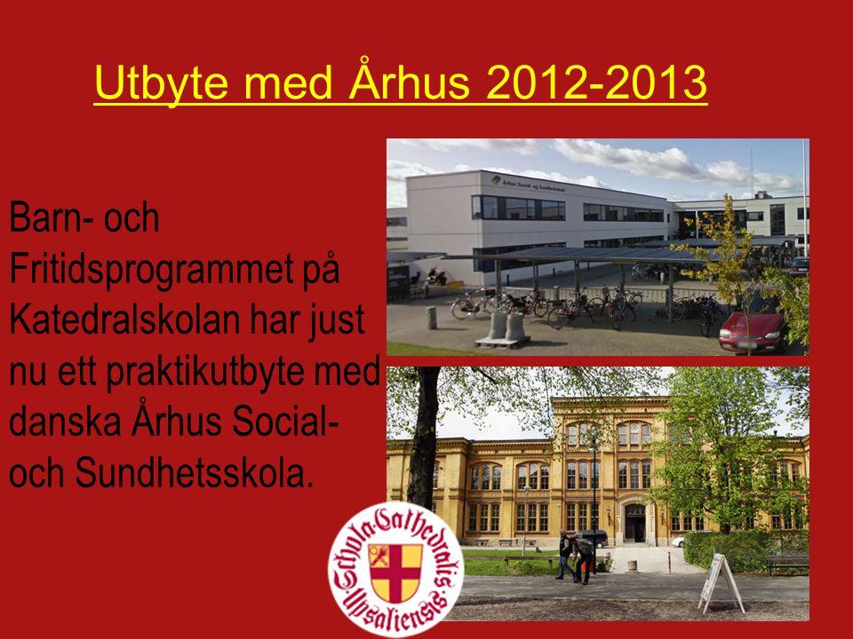 Barn- och Fritidsprogrammet på Katedralskolan har just nu ett praktikutbyte med danska Århus Social- och Sundhetsskola.