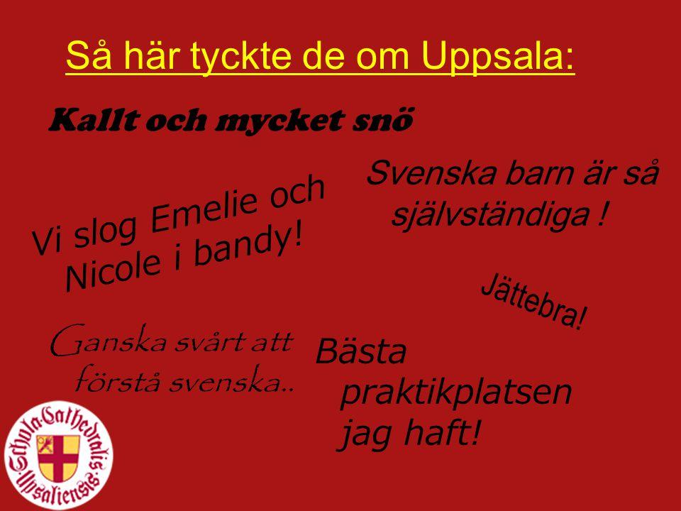 Så här tyckte de om Uppsala: Kallt och mycket snö Jättebra.