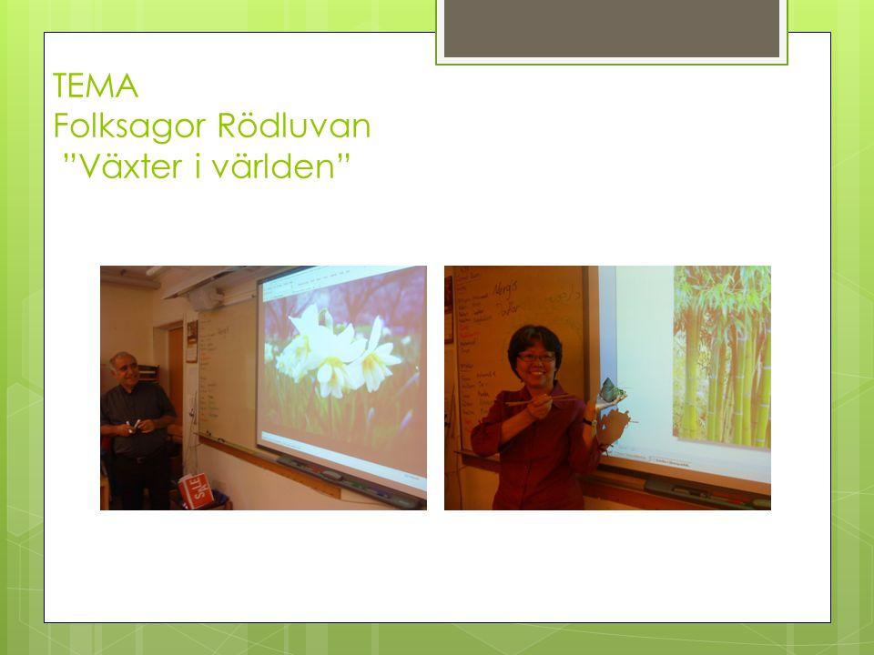 """TEMA Folksagor Rödluvan """"Växter i världen"""""""