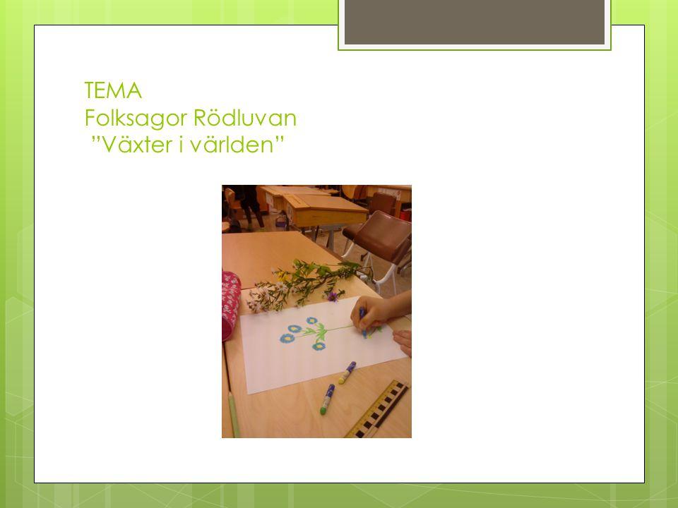 TEMA Folksagor Rödluvan Släktingar Egen bakgrund Barnets kunskaper Respekt och nyfikenhet Bilder som speglar olika kulturer och miljöer Föräldrarnas kunskaper tas tillvara
