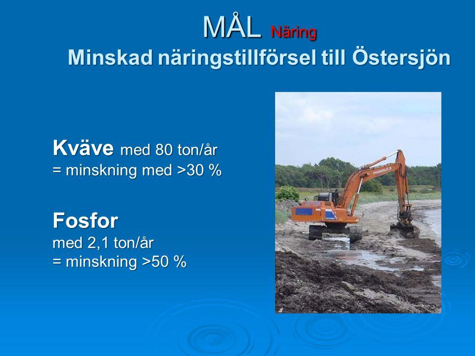 MÅL Näring Minskad näringstillförsel till Östersjön Kväve med 80 ton/år = minskning med >30 % Fosfor med 2,1 ton/år = minskning >50 %