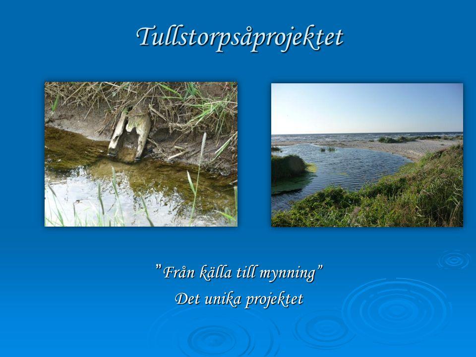 """Tullstorpsåprojektet """" Från källa till mynning"""" Det unika projektet"""