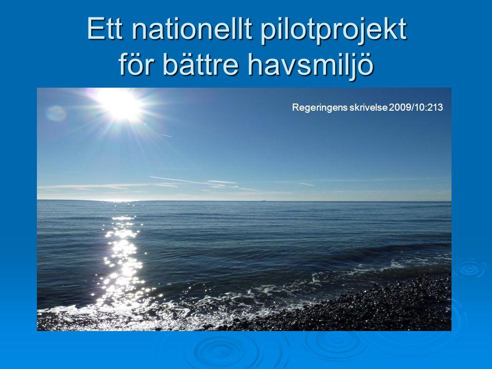 Ett nationellt pilotprojekt för bättre havsmiljö Regeringens skrivelse 2009/10:213