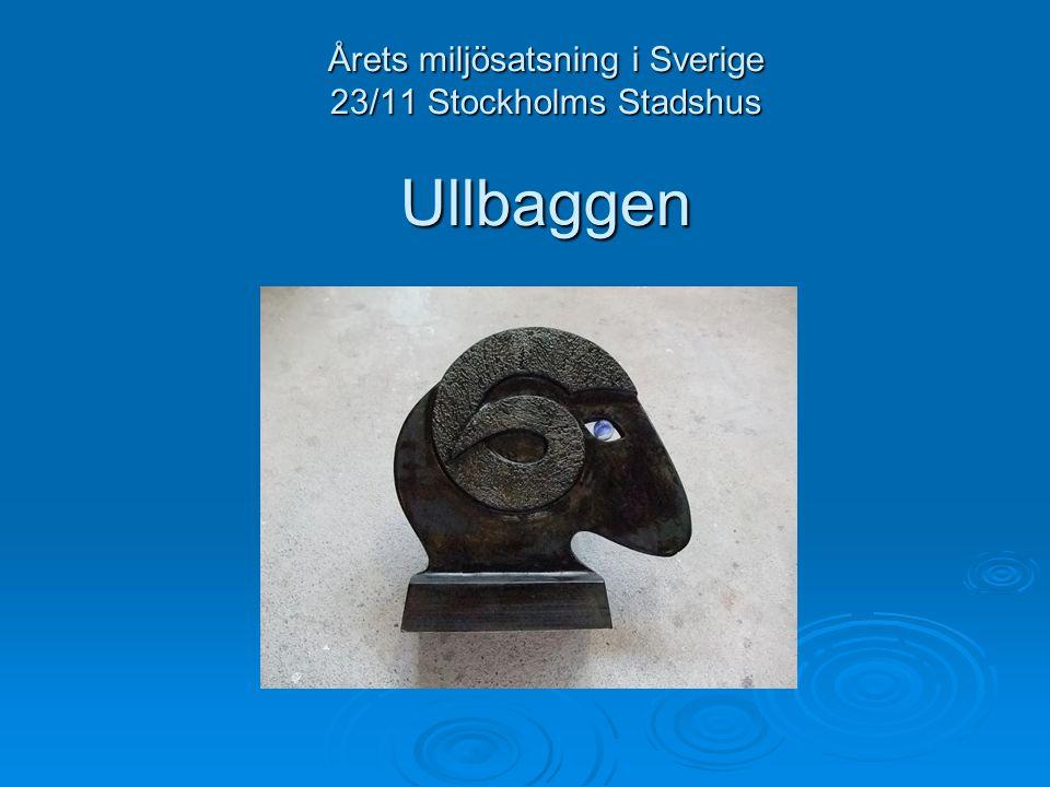 Årets miljösatsning i Sverige 23/11 Stockholms Stadshus Ullbaggen