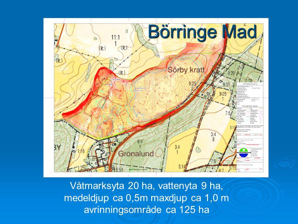 Våtmarksyta 20 ha, vattenyta 9 ha, medeldjup ca 0,5m maxdjup ca 1,0 m avrinningsområde ca 125 ha Börringe Mad