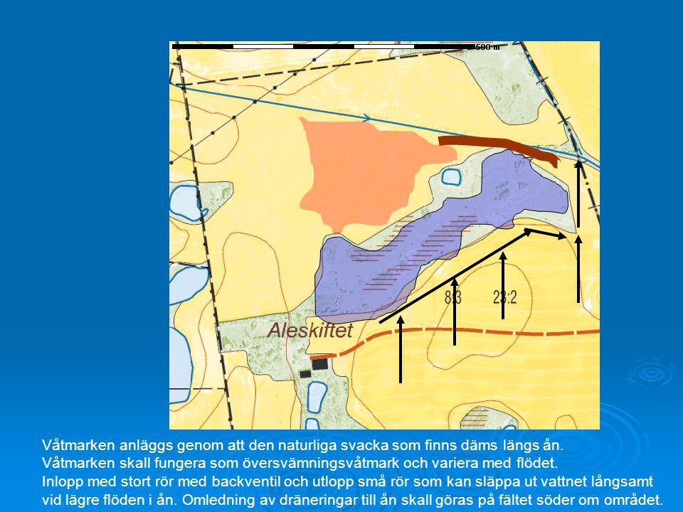 Våtmarken anläggs genom att den naturliga svacka som finns däms längs ån. Våtmarken skall fungera som översvämningsvåtmark och variera med flödet. Inl