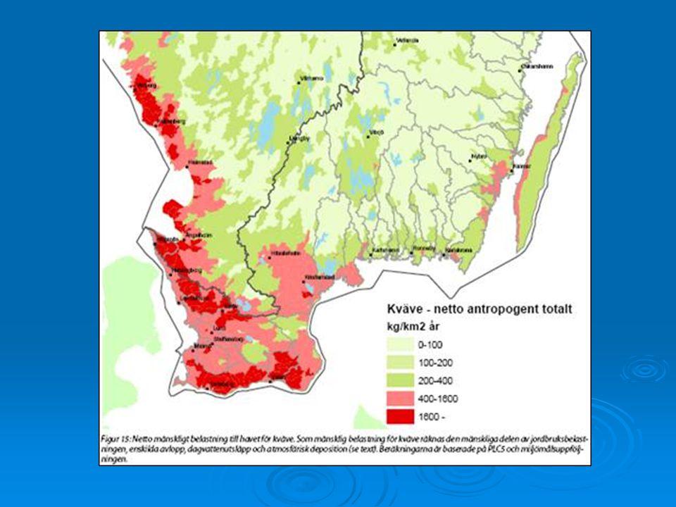 Avrinningsområde ca 6300 ha Åkermark dominerar > 85% Näringstransport från ån är ca 250 ton/N/år ca 4 ton/P/år Dålig ekologisk status Tullstorpsåns avrinningsområde