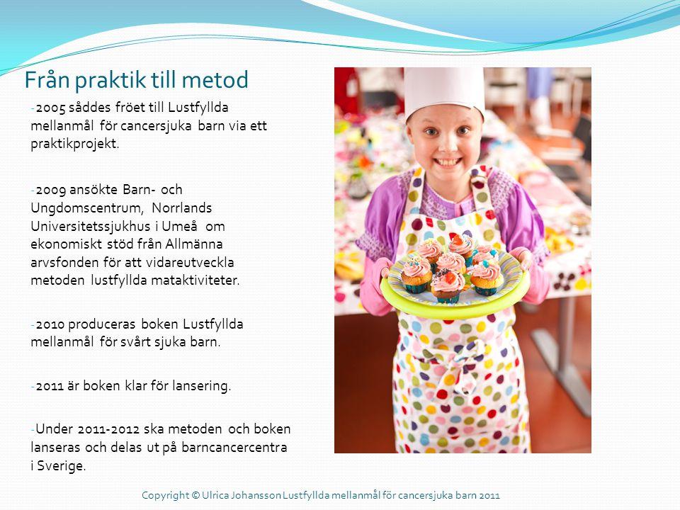Från praktik till metod - 2005 såddes fröet till Lustfyllda mellanmål för cancersjuka barn via ett praktikprojekt. - 2009 ansökte Barn- och Ungdomscen