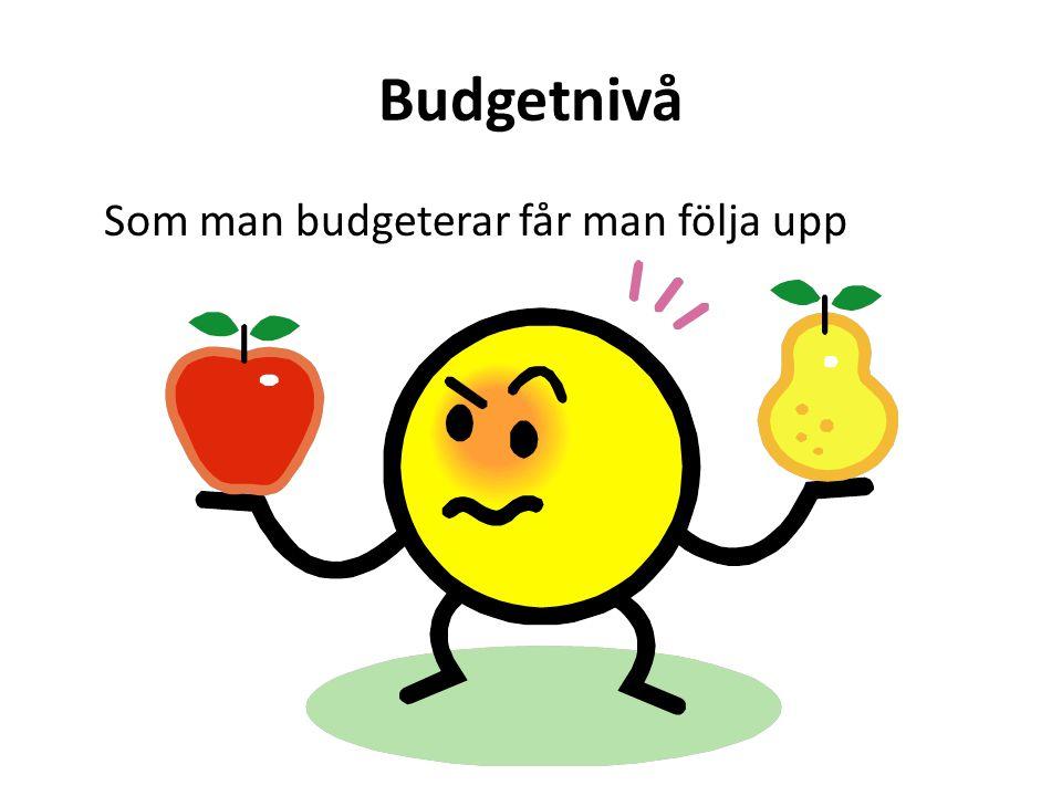 Budgetnivå Som man budgeterar får man följa upp