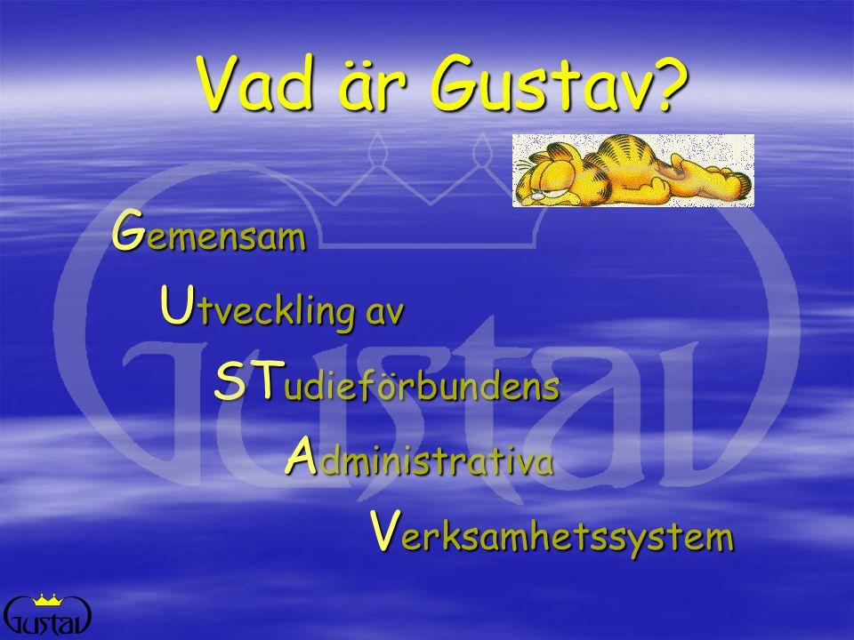 Datadelegation Gustavgrupp Organisation Arbetsgrupper, utbildare, tekniker, supportfolk, externa konsulter Gustavansvariga