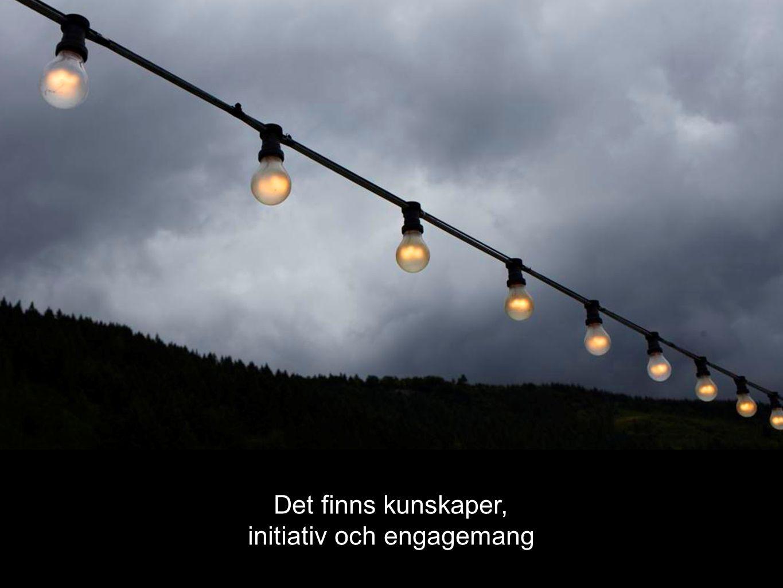 Det finns kunskaper, initiativ och engagemang