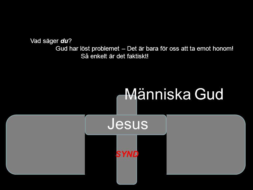 Gud Vad säger du? Gud har löst problemet – Det är bara för oss att ta emot honom! Så enkelt är det faktiskt! Gud Jesus SYND Människa