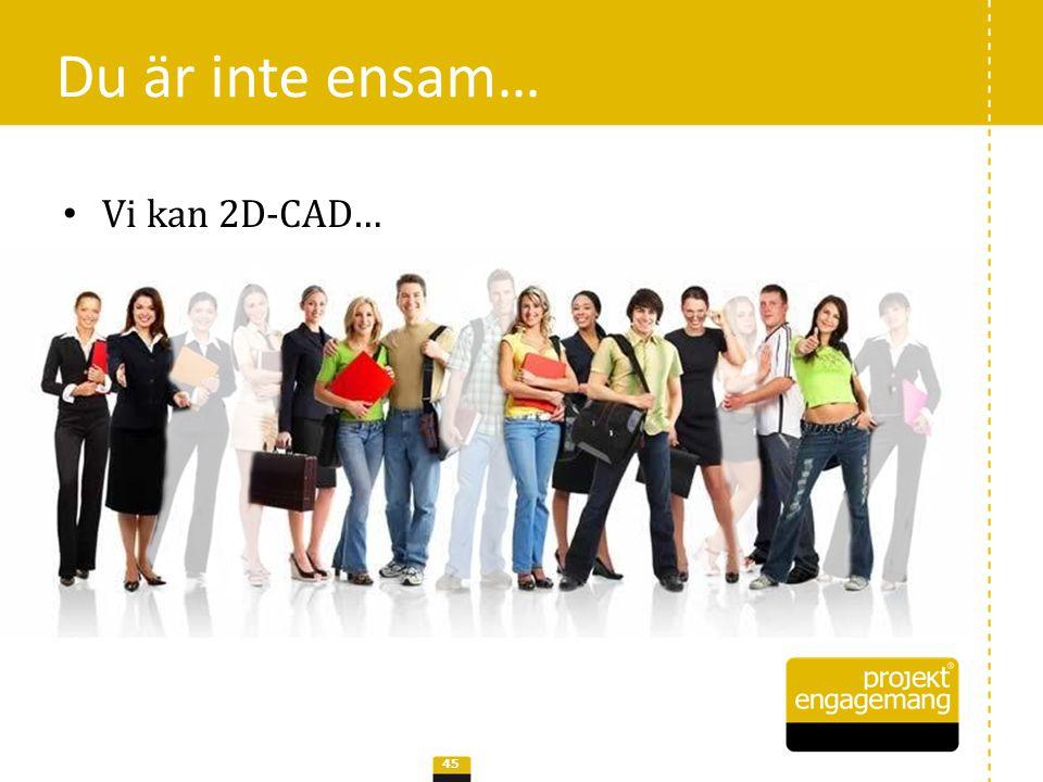 Du är inte ensam… 46 • Vi kan 3D-CAD…