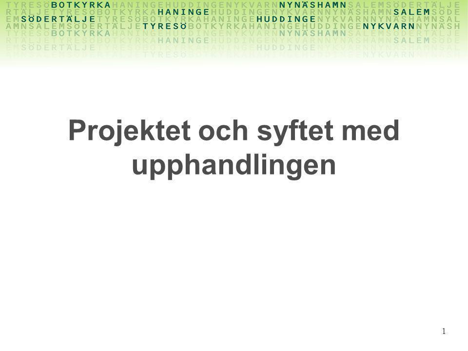 Vad - fortsättning •Kommunernas data hos företaget •Sköta dataleveranser mot tredje part 12