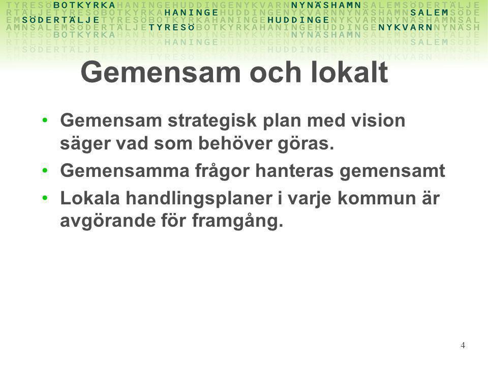 4 Gemensam och lokalt •Gemensam strategisk plan med vision säger vad som behöver göras.