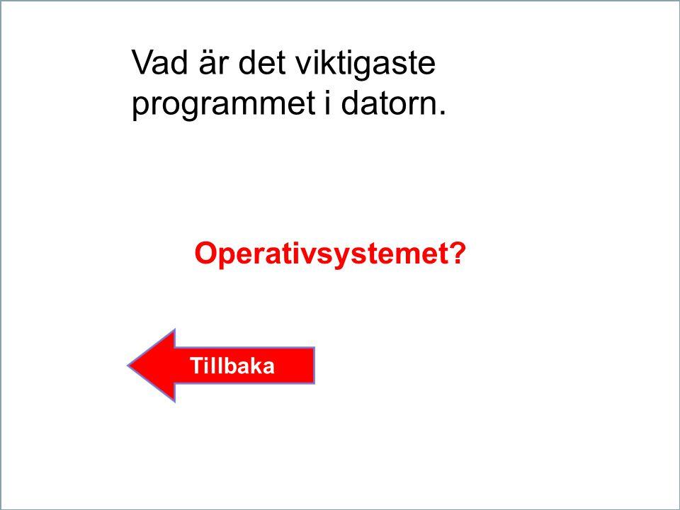Vad är det viktigaste programmet i datorn. Operativsystemet? Tillbaka