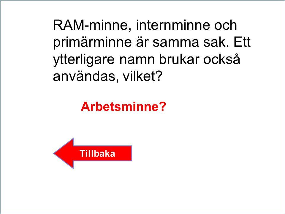 RAM-minne, internminne och primärminne är samma sak.