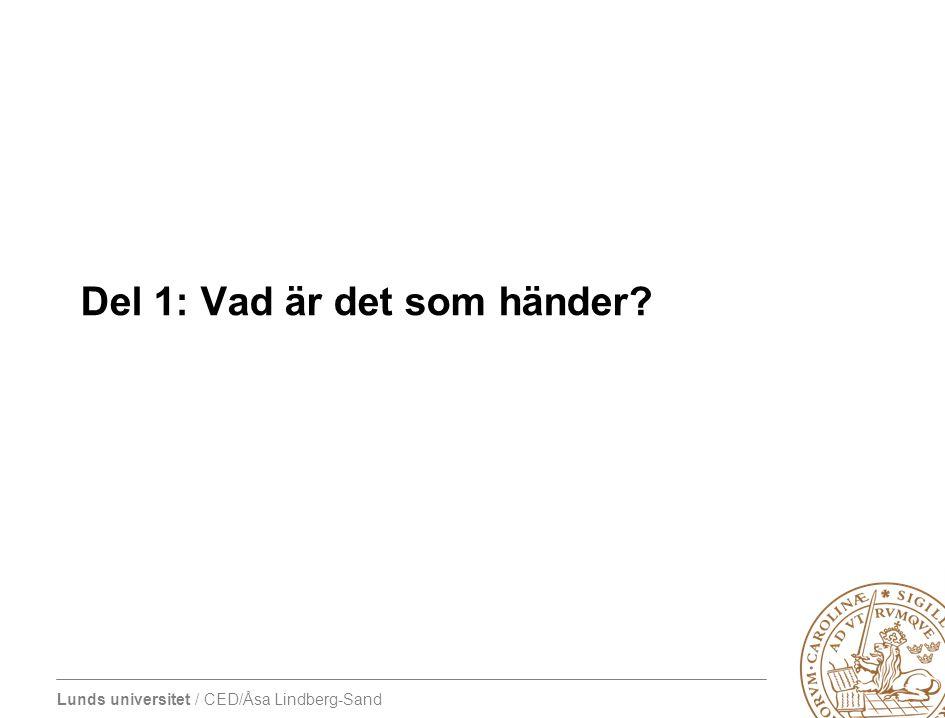 Lunds universitet / CED/Åsa Lindberg-Sand Del 1: Vad är det som händer?