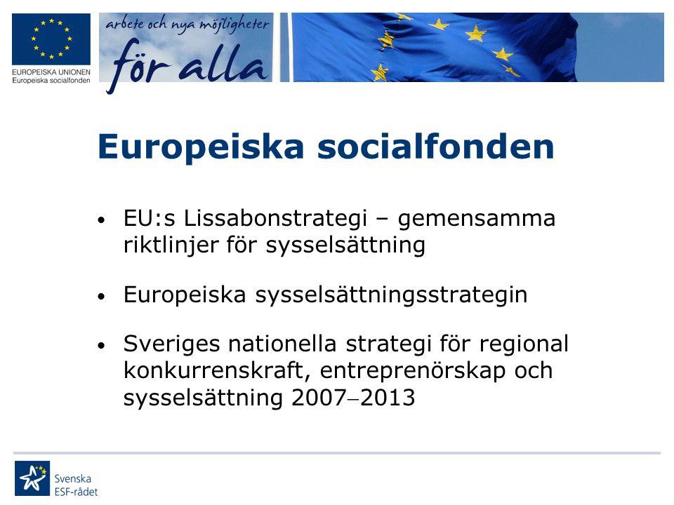 Europeiska socialfonden • EU:s Lissabonstrategi – gemensamma riktlinjer för sysselsättning • Europeiska sysselsättningsstrategin • Sveriges nationella