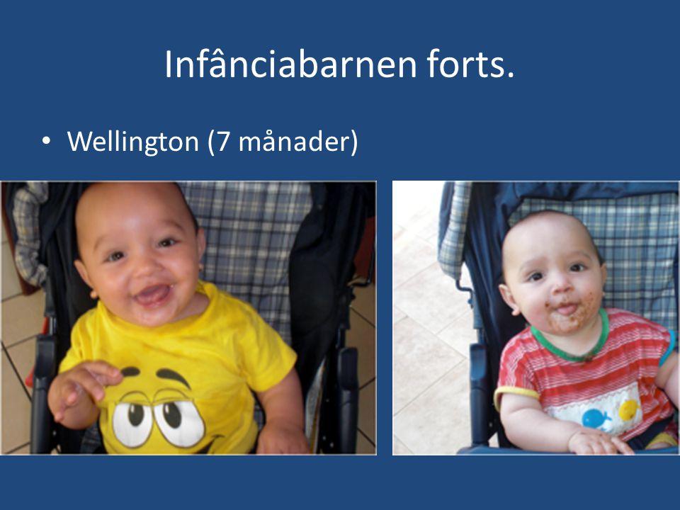 Infânciabarnen forts. • Wellington (7 månader)